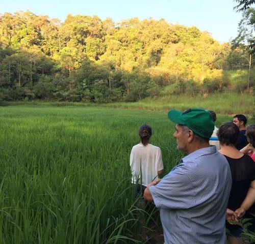 acolhendo de cá e de lá - agricultores, Santa Catarina